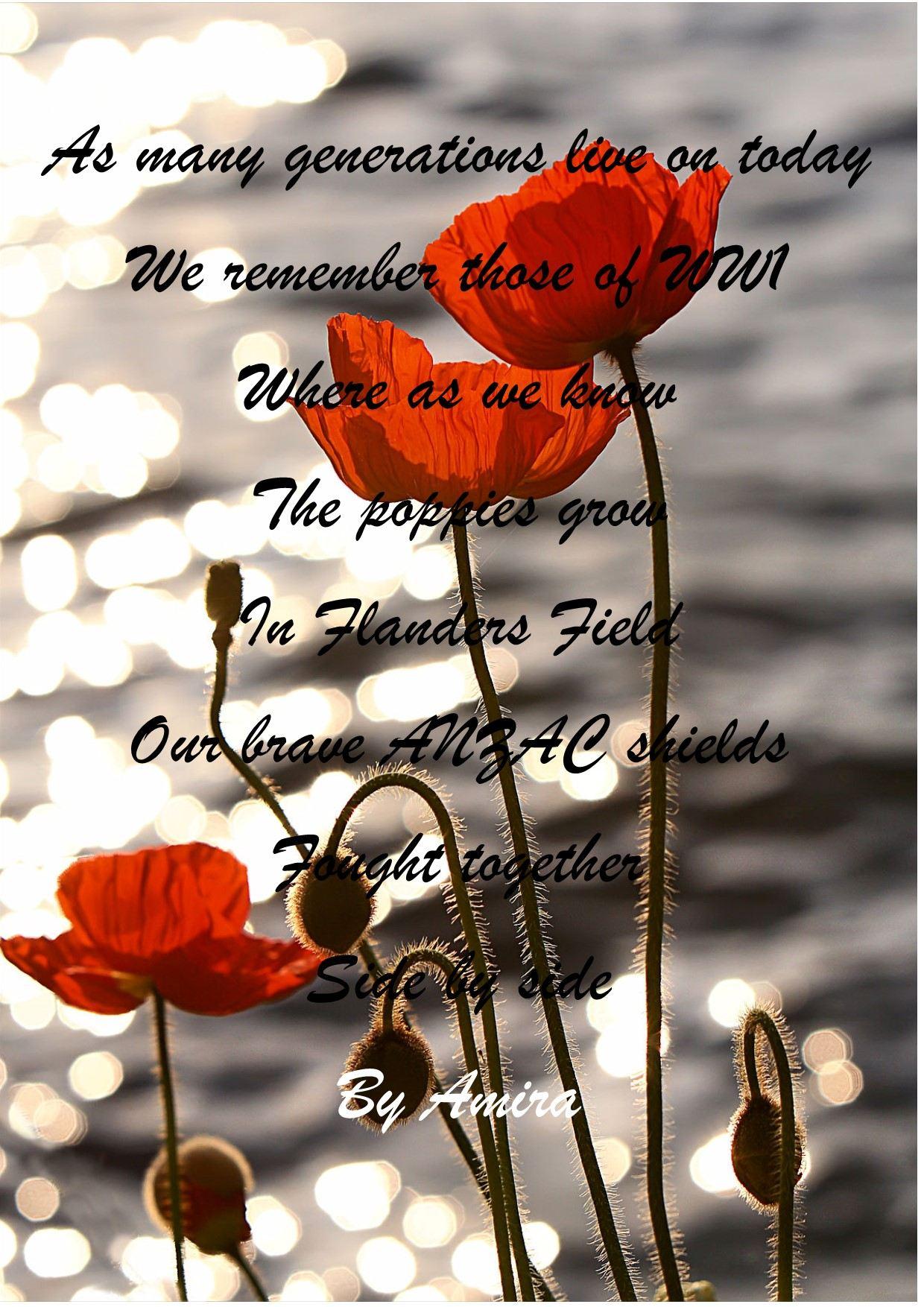 Poppy Poem For Anzac Day By Amira 1yj80y3 Tiger Tales